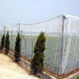 Insect Netto voor LandbouwSerre