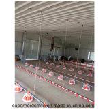 スリランカの販売のための養鶏場装置