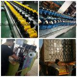 Turbulenz-Wasser-Pumpe mit bester Qualität 0.37kw (QB60)