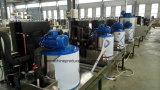 300kgs de Machine van het Ijs van de vlok voor de Opslag van het Overzeese Voedsel