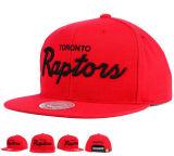 Крышка Snapback вышивки новых баскетбольных команд цветастая