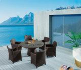 Jardín al aire libre grande de los muebles de la mesa redonda de la rota de mimbre que cena el conjunto con la silla (YTA020-1&YTD121)