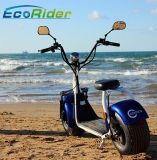 2017 Ecorider Citycoco electric scooter moto avec la CEE Coc approuvé
