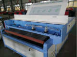 Auto het Voeden Kledingstukken/Laser Cloth/Leather/Fabric/Textile Scherpe Machine
