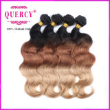 Omber Hair Extensions를 위한 3 색깔 Top Quality 100%년 Virgin Peruvian Human Remy Hair
