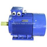 Motore elettrico asincrono a tre fasi di alta efficienza di induzione Y2
