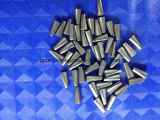 겨울 타이어에서 사용되는 시멘트가 발라진 탄화물 핀