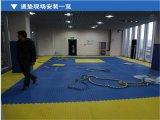Stuoia di Tatami di karatè della competizione internazionale da vendere