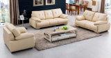 Estilo de moda de móveis domésticos de sofá (OWSF-004)
