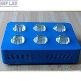 6 chips de sabugo 42*3W luz crescer LED 756W