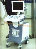 Цветного доплеровского ультразвукового оборудования типа кардиологических 96 элементов датчика