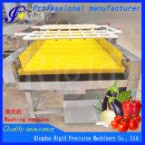 과일 통조림 식물성 압력 살포 세탁기 기계