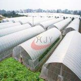 Película de plástico agrícola solo abarcan los gases de efecto invernadero; solo agrícola Span