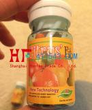Capsule di dimagramento adatte di vendite di peso di perdita dell'agrume superiore dei prodotti