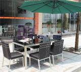 Rotin extérieur de PE de restaurant de jardin dinant des meubles