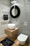 El borde biselado mate ladrillos decorativos de pared de azulejos de cerámica Galzed69x240mm
