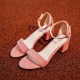 새로운 하이 힐 여자의 샌들 크기 34-40가 형식에 의하여 여자 섹시한 플래트홈 샌들 발뒤꿈치 여름 단화 샌들 여자 구두를 신긴다
