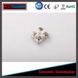 Blocchetto terminali della striscia di ceramica 99 Al2O3 (25A)