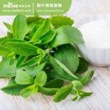 Estratto naturale del foglio di Stevia di 100%