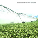 Impianto di irrigazione concentrare ultra molto in vista del perno di stile della valle