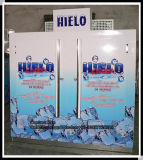 Escaninho de armazenamento do gelo/especialista das técnicas mercantís ensacados internos/ao ar livre do gelo (DC-750)