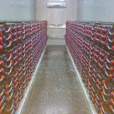 Transport gratuit batteries solaires 1000ah de cycle profond de 2 volts