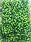 Plantas y flores artificiales de la hierba artificial Gu722-Wa0060