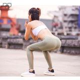 Гетры тяжелое дыхание йоги оптовой продажи метки частного назначения конкурентоспособной цены, сексуальная йога задыхаются женщины с сеткой