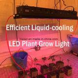 Iluminación del crecimiento de la certificación LED de ETL para el invernadero