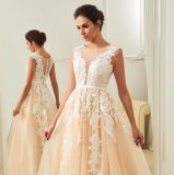 Кружевной Appliqued шампанское устраивающих Gowns элегантный длинный открытый свадебные платья