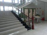 Edelstahl-Treppenhaus Belüftung-hölzerner Handlauf-hölzerne Tragbalken