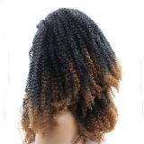 아프로 흑인 여성을%s 비꼬인 꼬부라진 합성 레이스 정면 가발