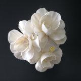 ハンドメイドによるリード拡散器のための一般に菊のSolaの花