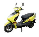 Bike качества стабилизированный 500W 800W 1000W хозяйственный взрослый дешевый электрический (CCES-11)