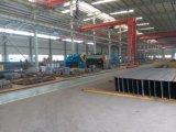 Gruppo di lavoro Bene-Venduto della struttura d'acciaio
