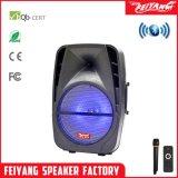 Мощная акустическая Feiyang F-18m