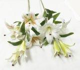 Fleurs artificielles de contact normal de lis de tigre 787563-7