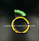 Treccia Sc/APC G652D del gruppo di memoria del connettore 12 della fibra del cavo ottico della fibra