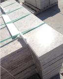 Tegels van de Plakken van het Kalksteen van de melkweg de Zilveren