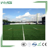 الصين مصنع يبستن بيع بالجملة اصطناعيّة عشب [هيغقوليتي]