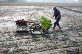 De Plantmachine van de Rijst van het Type van handvat