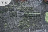 [شنيلّ] جاكار بناء [شبر] أريكة بناء [260غسم] ([فث31032])