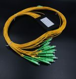 Pon/FTTH/CATV를 위한 Gpon 원거리 통신 1X16 PLC 쪼개는 도구 선반 상자