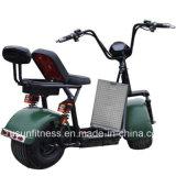 2 عجلات [1500و] محرّك كثّ مكشوف درّاجة ناريّة [أفّ-روأد] مع [60ف] بطارية