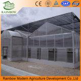 Glasshouse Multi-Пяди с внутренней и внешней системой Shading