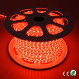 아름다운 LED 다채로운 점화 옥외 크리스마스 불빛 X'mas 빛