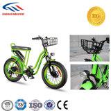 형식 작풍 공장 직접 공급자 전기 자전거