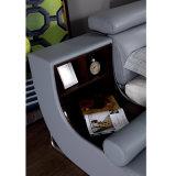 현대 작풍 커피 색깔 가죽 침대 가구 Fb8155