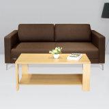 Коммерческого уровня мебели офиса диван
