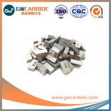 De Gesoldeerde Uiteinden van het wolfram Carbide A10 A12 A16 A20